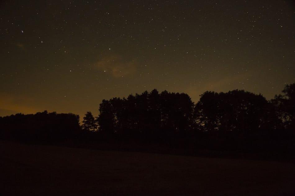 Sterne klarer Himmel Bäume